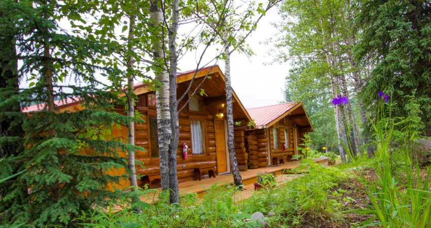 Guest cabins at the Kantishna Roadhouse.
