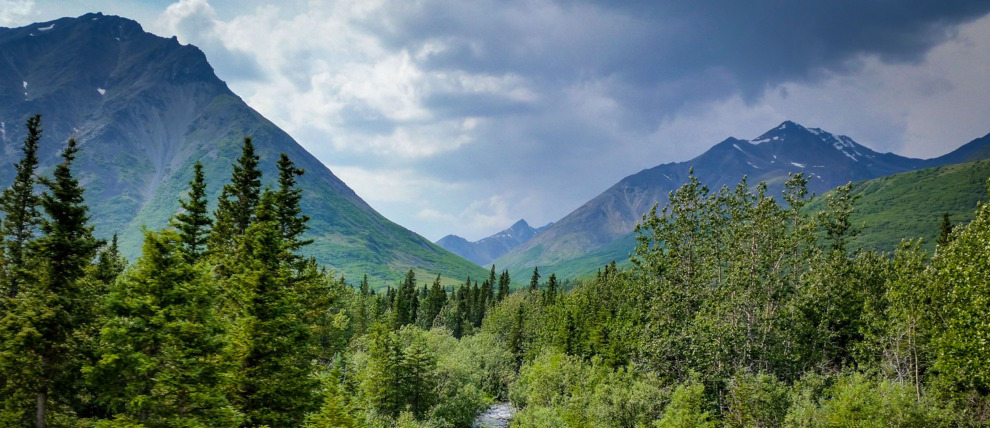 Fairbanks To Denali Transportation Alaskatravel Com