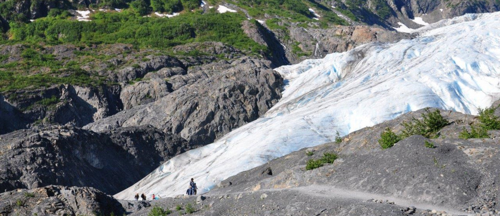 Seward Exit Glacier Naturalist Hike
