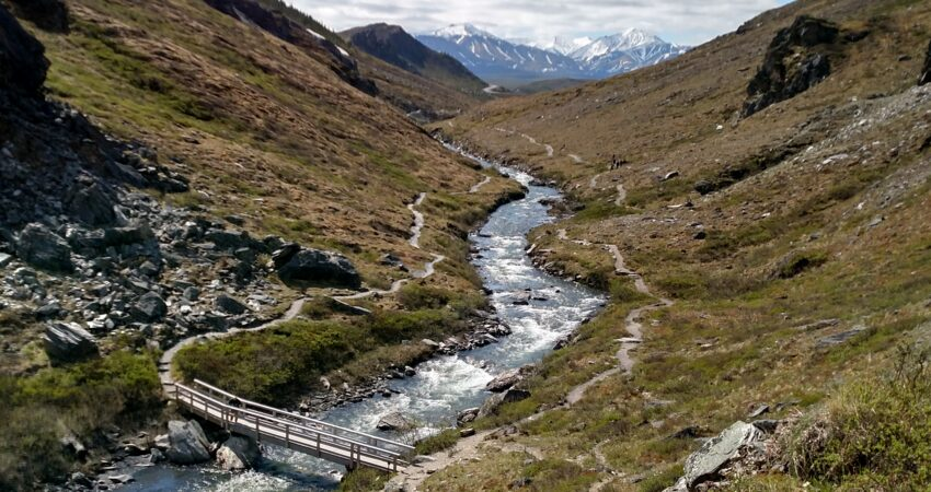 Clear day along the Savage River walk in Denali National Park.