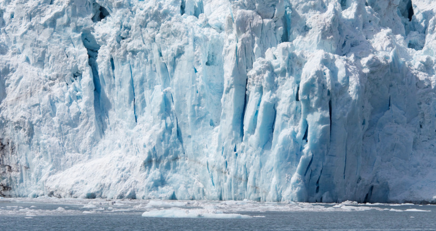 Tidewater glaciers expand throughout fjords and end in the ocean.