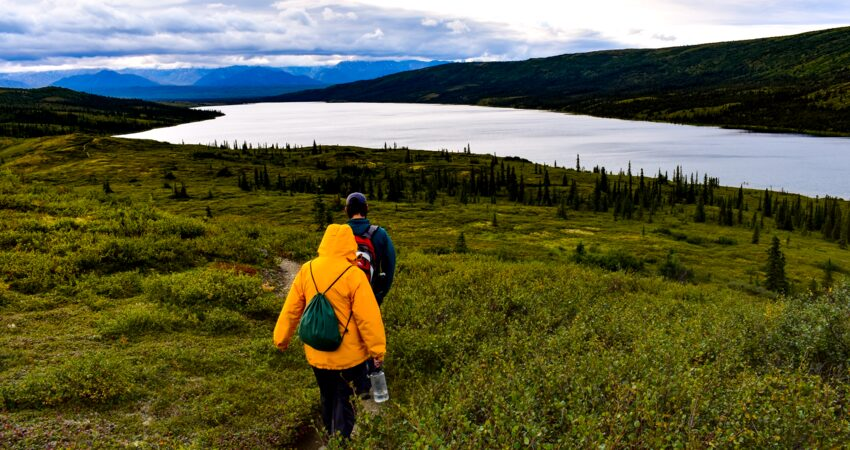 Guided hike near Denali's Wonder Lake.