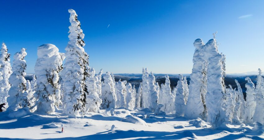 Bright, clear, and cold north of Fairbanks in winter.